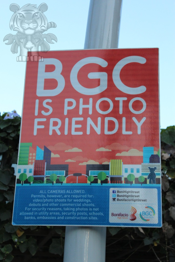 BGC is now photographer-friendly. No marshals will harm you unless you organize an non-permitted photoshoot
